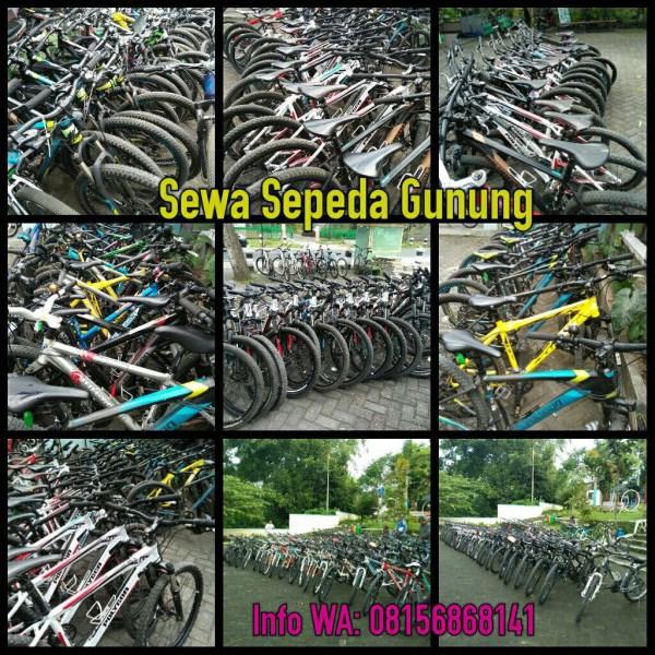 Rental Sepeda Gunung atau Sepeda MTB di Jogja